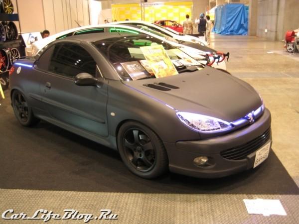 japansis2010-28